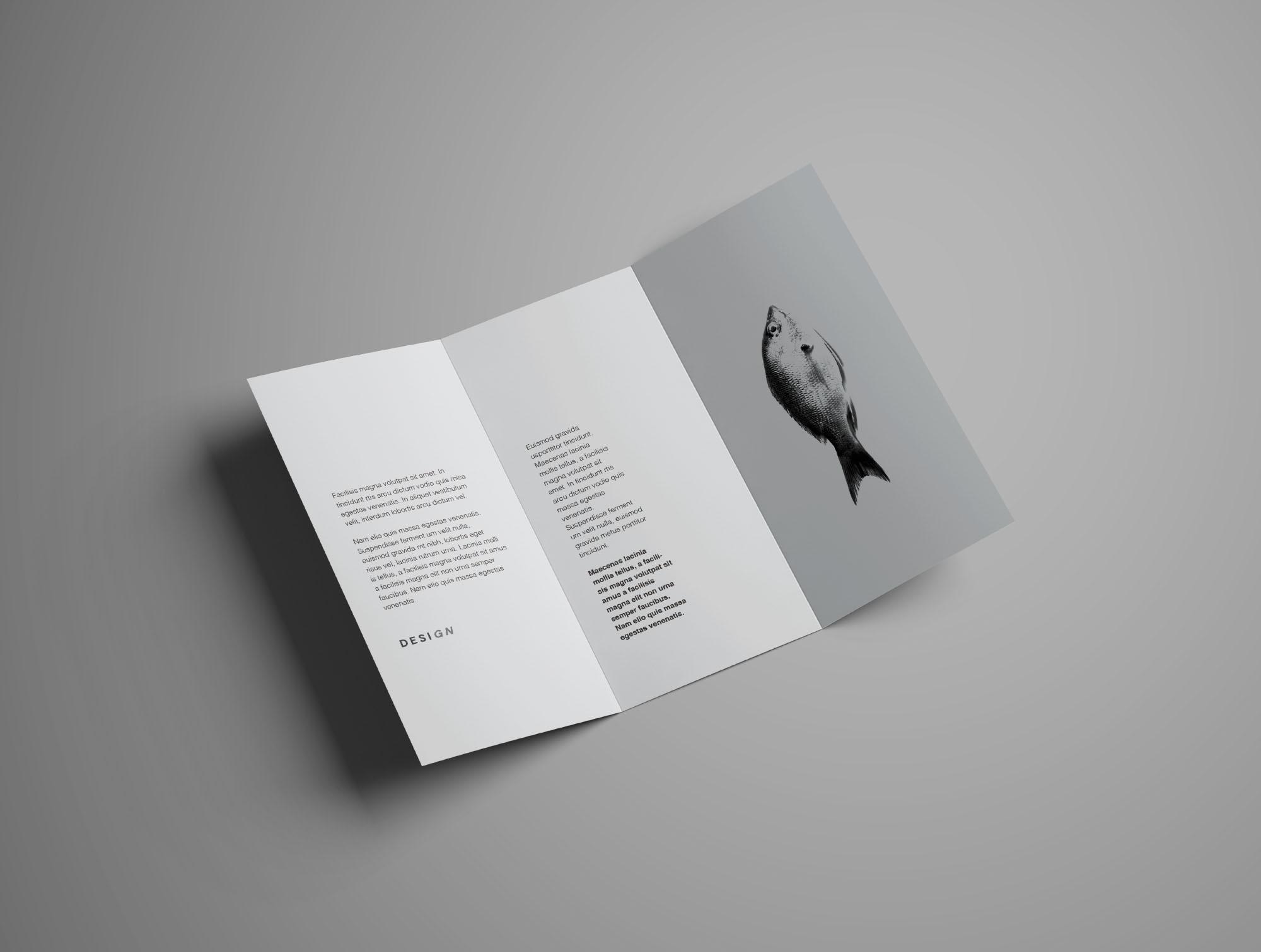 Mockup Folder 6