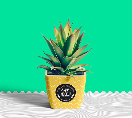 Mockup Vaso de planta