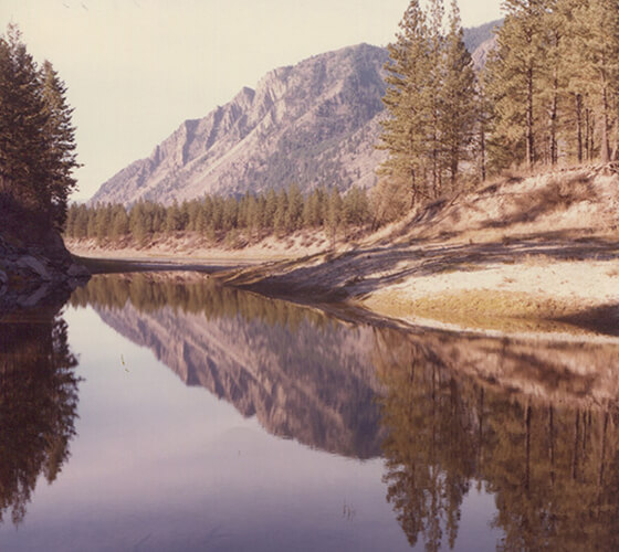 7 fotos vintage de natureza