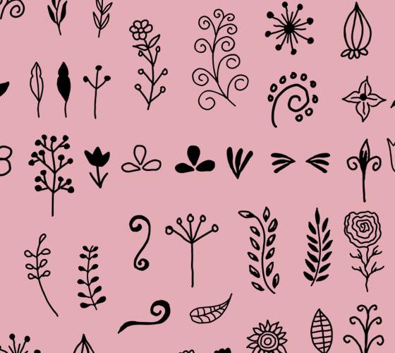 65 Vetores florais