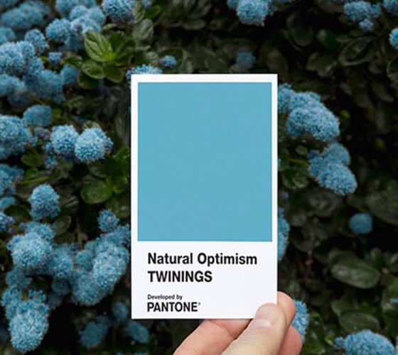 Natural Optimism, Pantone