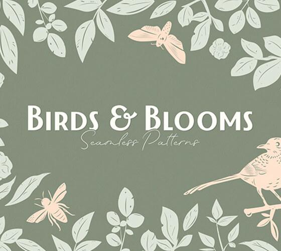 Padrões de Pássaros