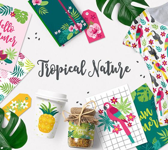 Ilustrações vetoriais tropicais